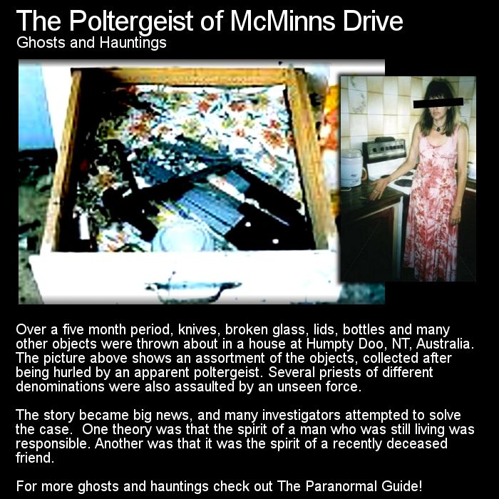 201 best poltergeists images on pinterest paranormal paranormal poltergeist of mcminns drive fandeluxe Document