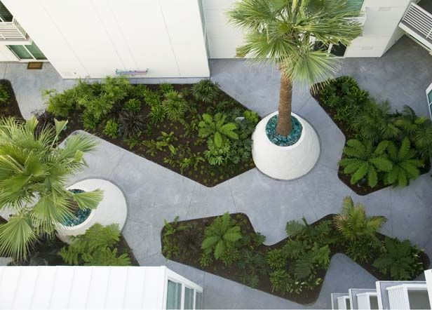 555 4th Street The Palms designed by CMG Landscape Architecture