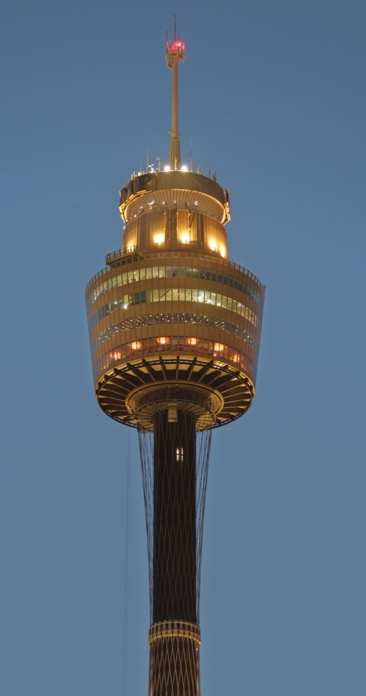 sydney tower - Google Search