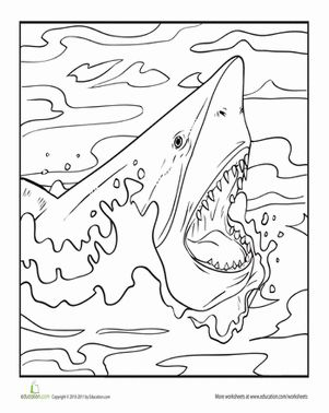 First Grade Second Grade Animals Worksheets: Color the Fearsome Shark