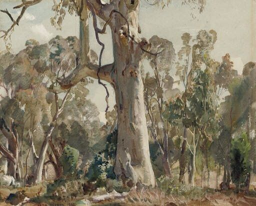 SIR HANS HEYSEN (1877-1968) THE GUM TREE