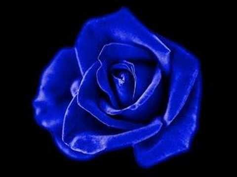 Lionel Richie - I love You (+playlist)