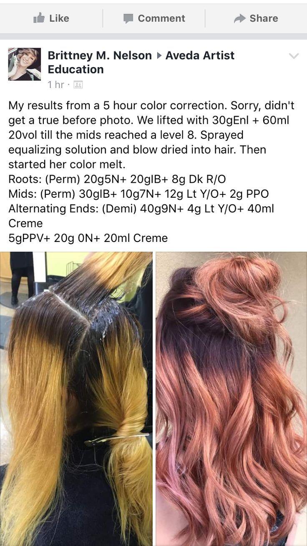 Hair Color Formulas Aveda Aveda Color Formulas Hair Hair Color Formulas Aveda Hair Color Matrix Hair Color