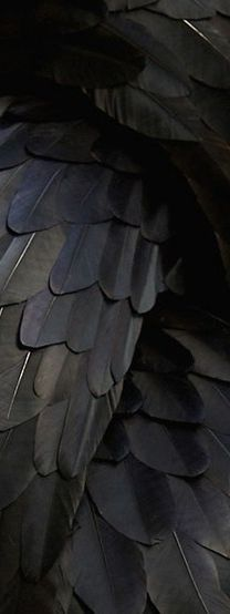 Black wings Interpretation: freedom, joy, self-confidence. One of my most powerful and recurring symbols.