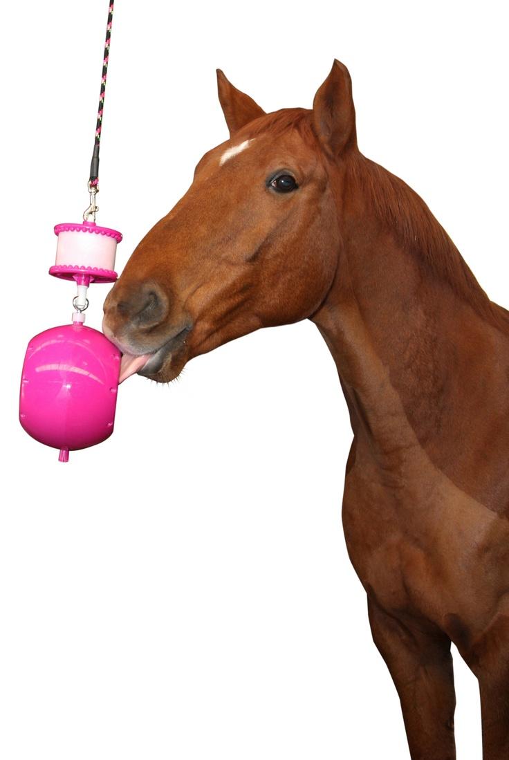 14 Best Likit Toys Images On Pinterest Horse Horse