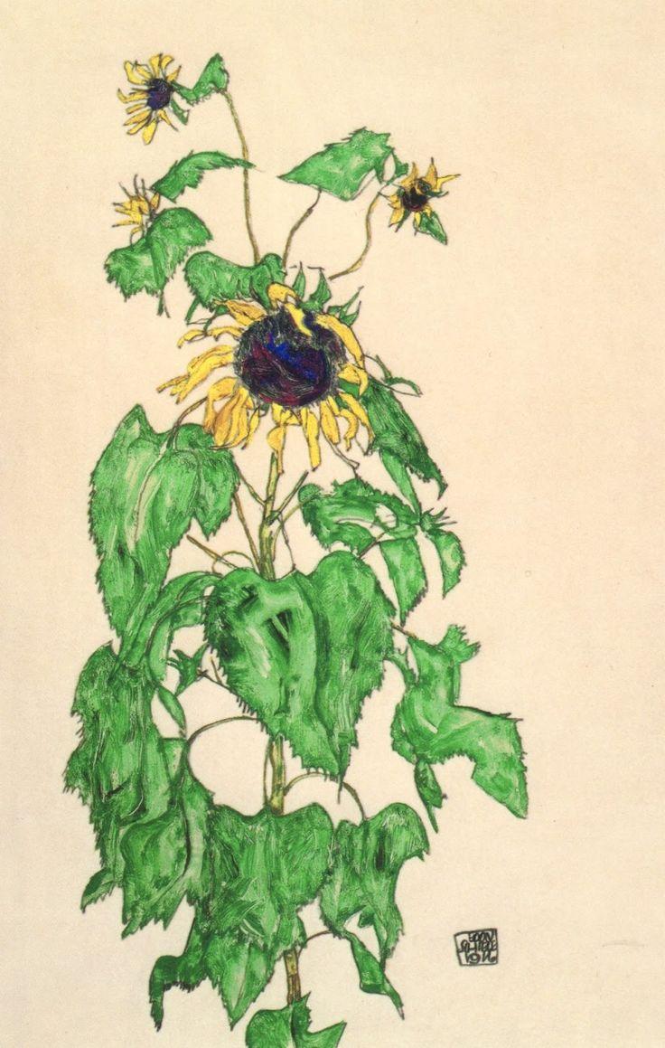 Egon Schiele flowers   Above: Egon Schiele, Sunflower, 1916, Collection of the Neue Gallerie ...