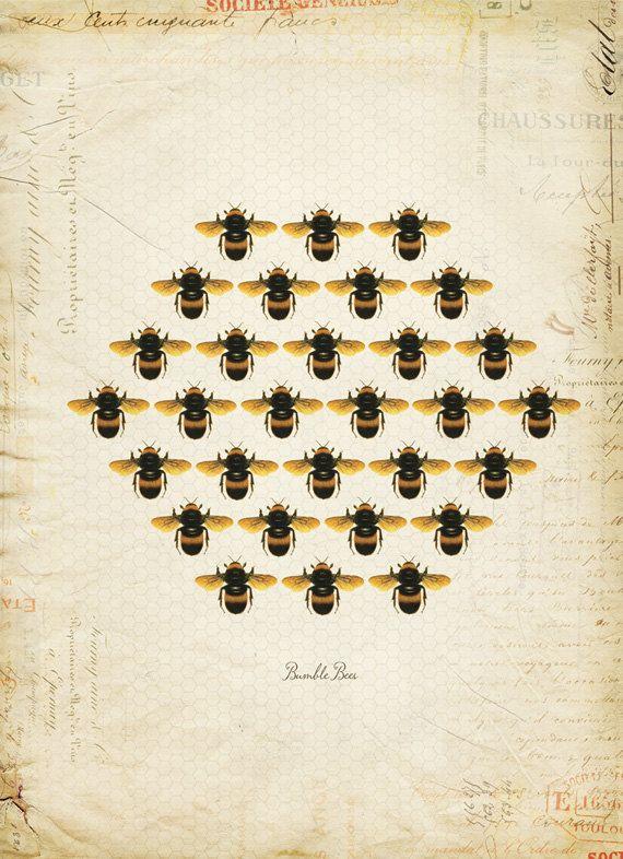 Vintage Bumble Bees Honeycomb on French Ephemera Print 8x10 P53. $14.00, via Etsy.