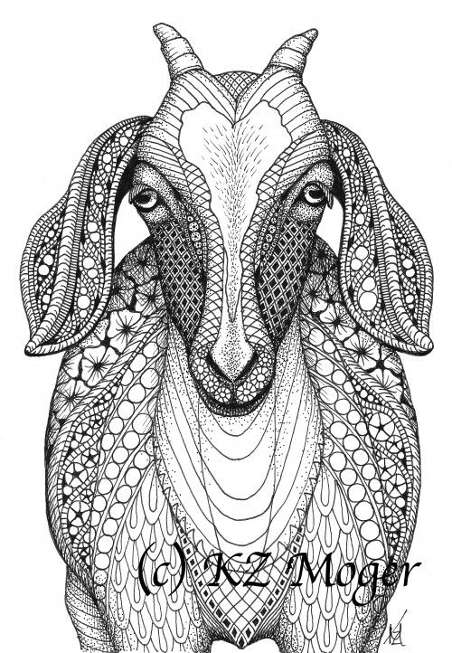 Nubian Goat- matted print from original drawing