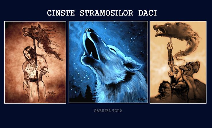 dacian warrior with dracones flag daoi dacii dac steag dacic lup alb legende fata daca sanziene