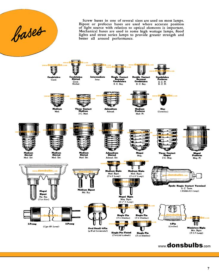 Bulb Bases Saves For Research Pinterest Type Chart Bulbs And Lights