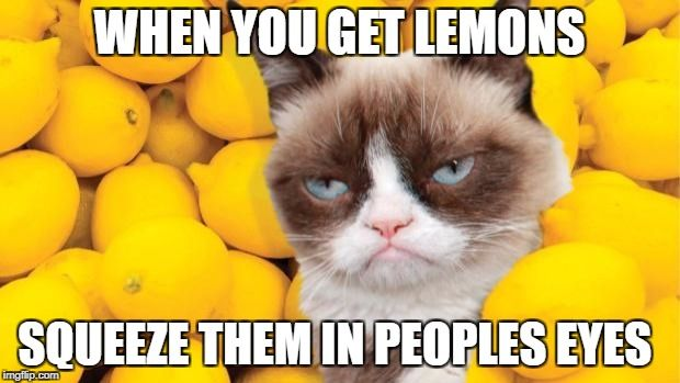 Grumpy Cat lemons | WHEN YOU GET LEMONS SQUEEZE THEM IN PEOPLES EYES | image tagged in grumpy cat lemons | made w/ Imgflip meme maker