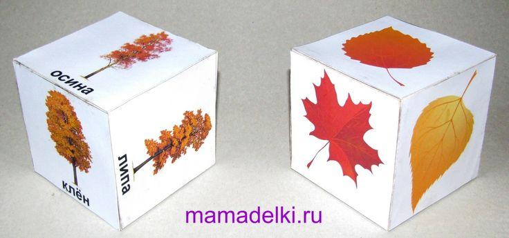 blad met bomen kubussen
