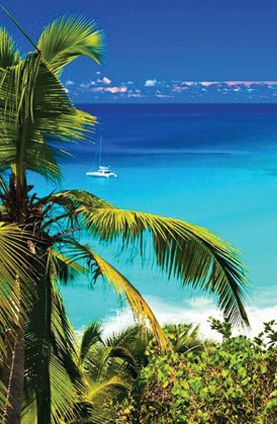 Grand Bahama Island, Bahamas. Spent our honeymoon here.