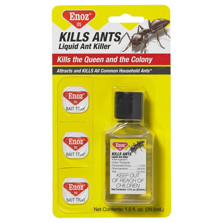 Enoz Kills Ants Liquid Ant Killer - 1.0 fl. oz
