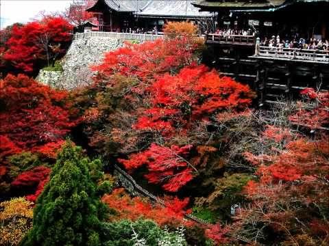 Paket Tour Jepang Rasa Cheria