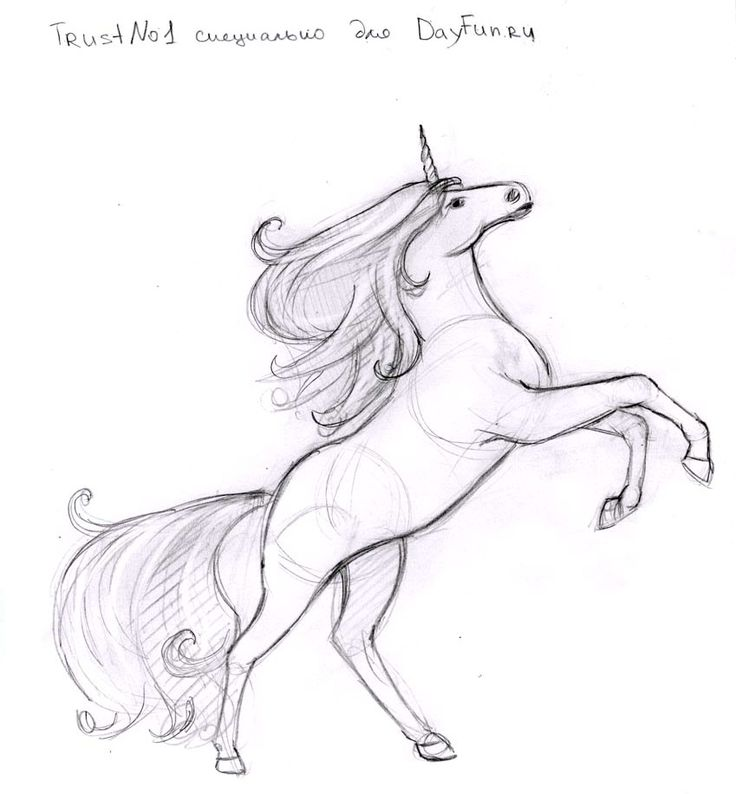 How to draw a unicorn step by step 6
