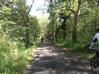 Alas Kethu - 12 Beautiful tourist attractions in the Wonogiri regency