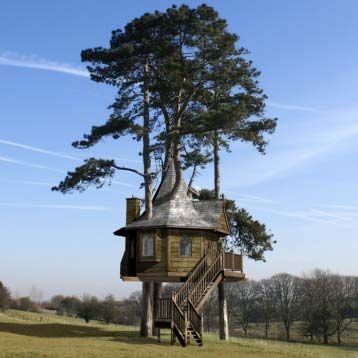 now, that's a tree house.