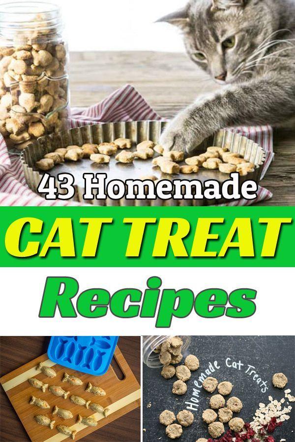 43 Homemade Cat Treat Recipes Delicious Healthy Homemade Cat Treats Recipes Cat Treats Homemade