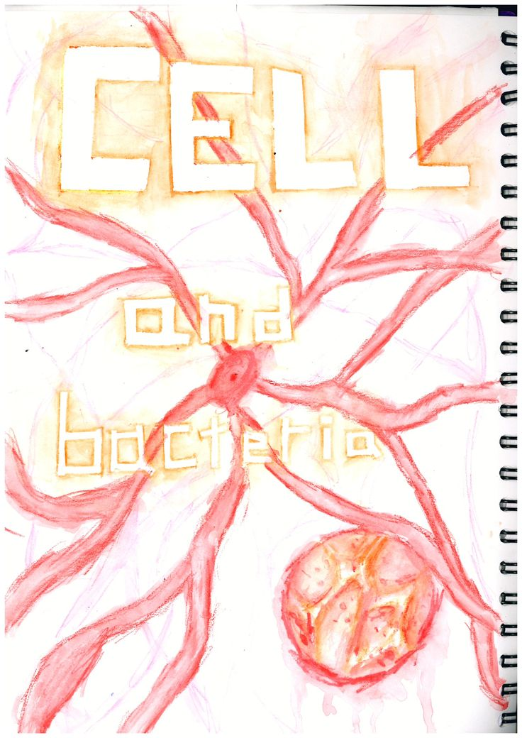 Miss Allen's Year 7 Students work from Princess Helena College. A 'Cells and Bacteria' project title page