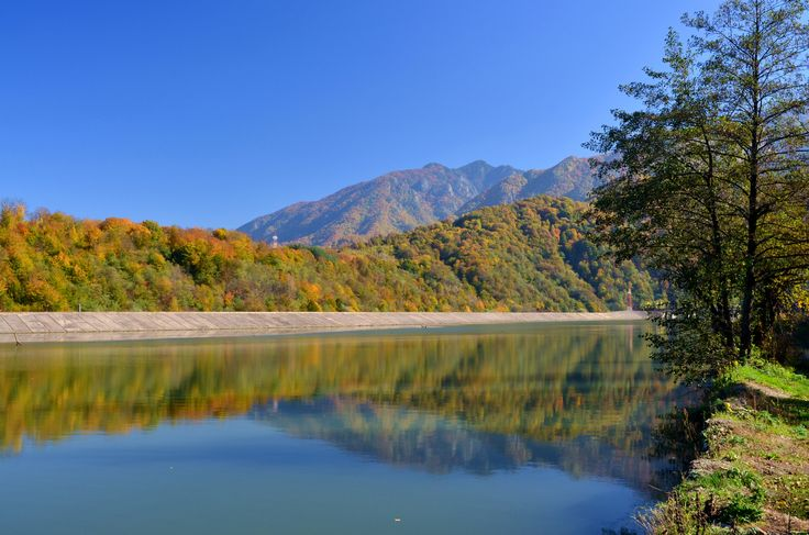 Fall Reflections - Fall Reflections