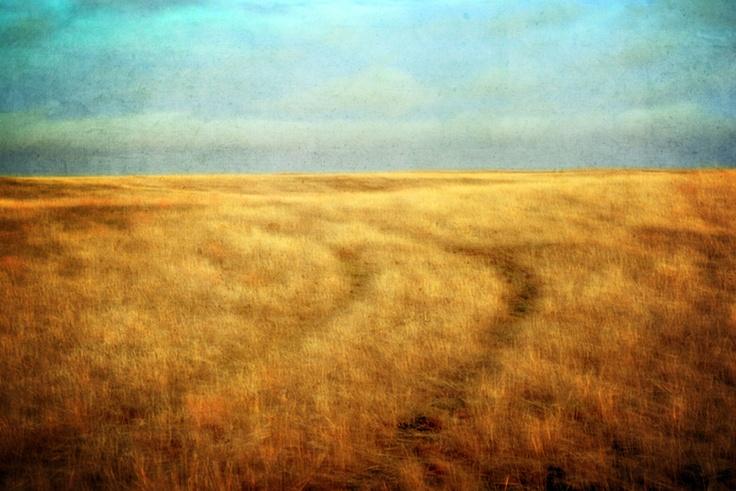 Tracks On Sacred Land