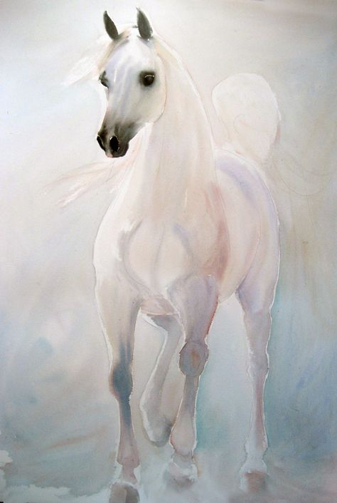 Beatrice Bulteau - #watercolor #horses - Arabian White http://www.beatricebulteau.com/main.html