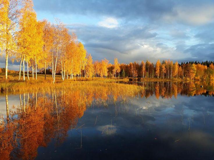 Sääkuva: Syksyn väriloistoa Kajaanissa