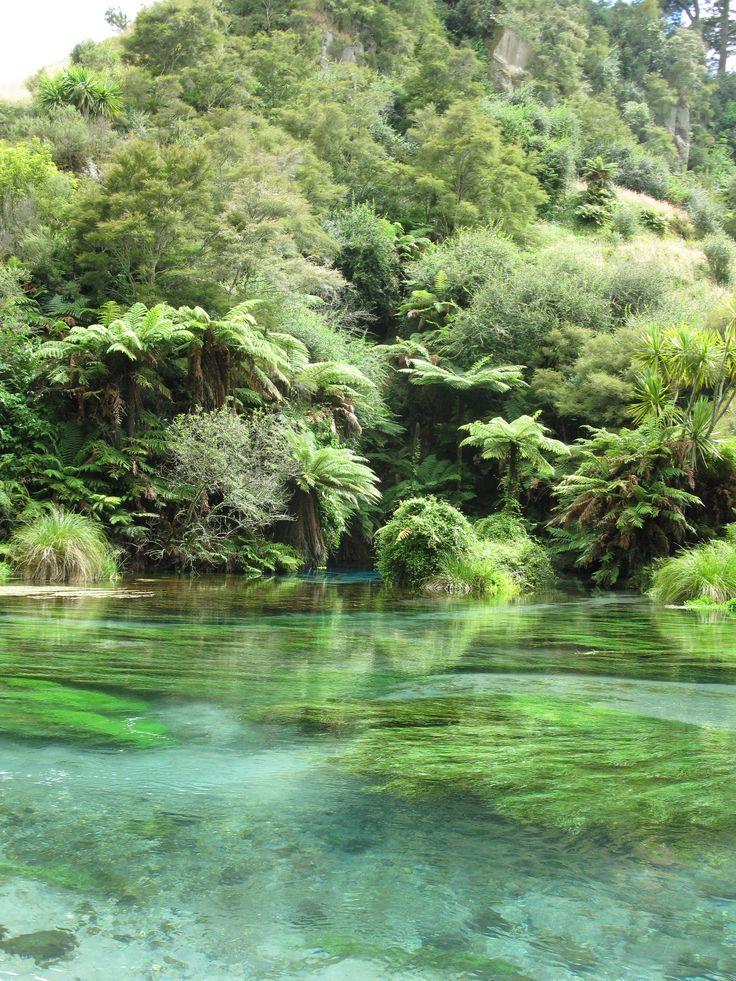 Blue Springs , New Zealand