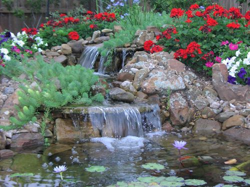 77 best images about garden water features on pinterest for Koi pool water gardens thornton