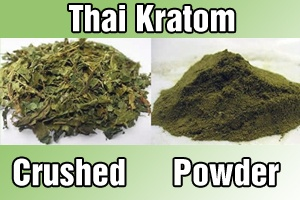 Buy Premium Commercial Grade Thai Kratom - You can find all your smoking accessories right here on Santa Monica #Kratom #Teagardins #SmokeShop