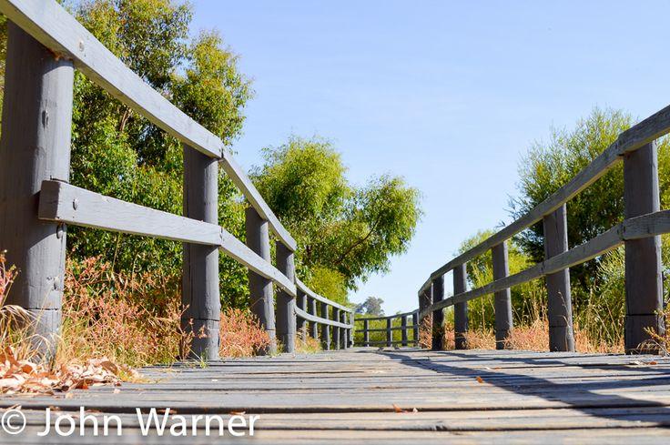 L1M1AP3-Landscape. 18-55mm Nikon DX Lens - 28mm - ISOAUTO(100) - 1/250 - F 8.0 - Hand held - Floor Level - Full Sun - Sunny Day.