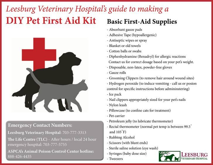 Since You Guys Seemed To Appreciate Pet Cpr Here Is A Pet First Aid Kit Infographic The More You Know Post First Aid Pets First Pet Emergency