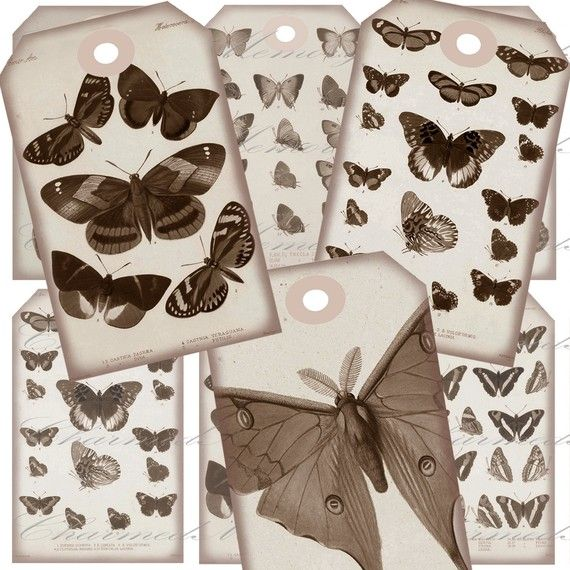Aged Sepia Butterfly  1 Hang Tags Digital by CharmedMemoryCollage, $3.50