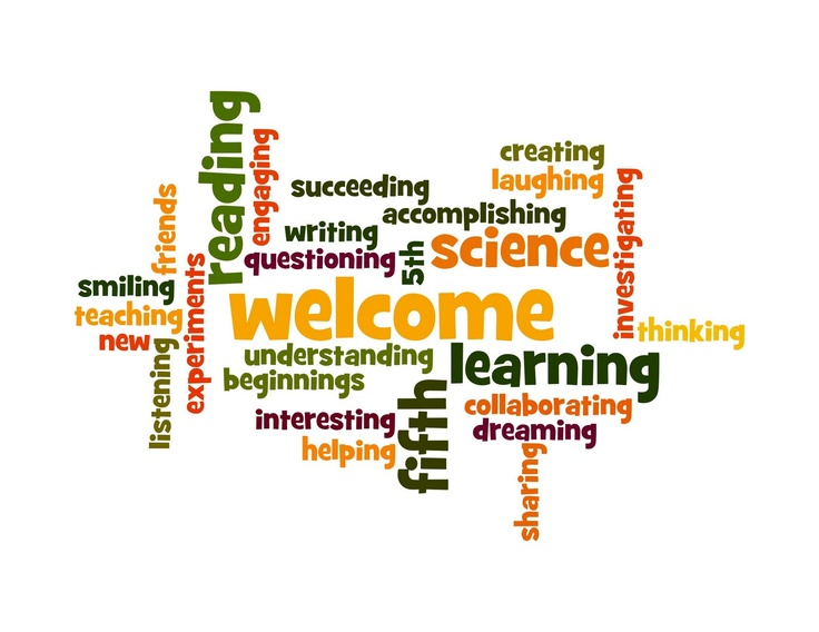 Word Clouds for the first week of school for students to introduce themselves and their hobbies...