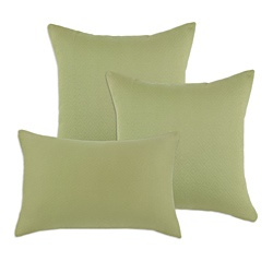 @Overstock - These decorative sage-green throw pillows owe their plush softness to the down-like fibers contained in the removable inserts. The polyester cover features a solid diamond pattern and comes off easily for machine-washing via the hidden zipper closure.http://www.overstock.com/Home-Garden/Hyannis-Leaf-Decorative-Sage-Green-S-Backed-Fiber-Accent-Throw-Pillows-Set-of-3/6856800/product.html?CID=214117 $39.49