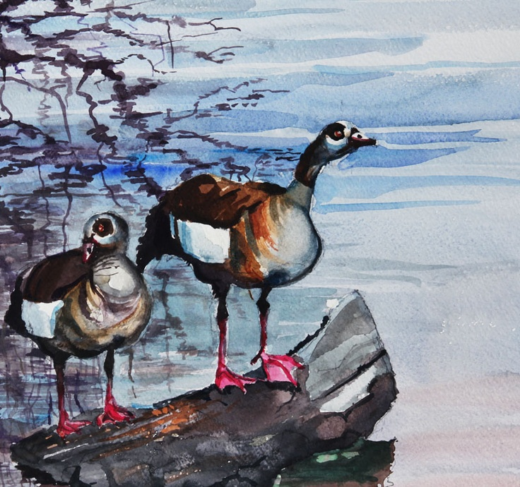 Ducks on a pond by Peter Croxon