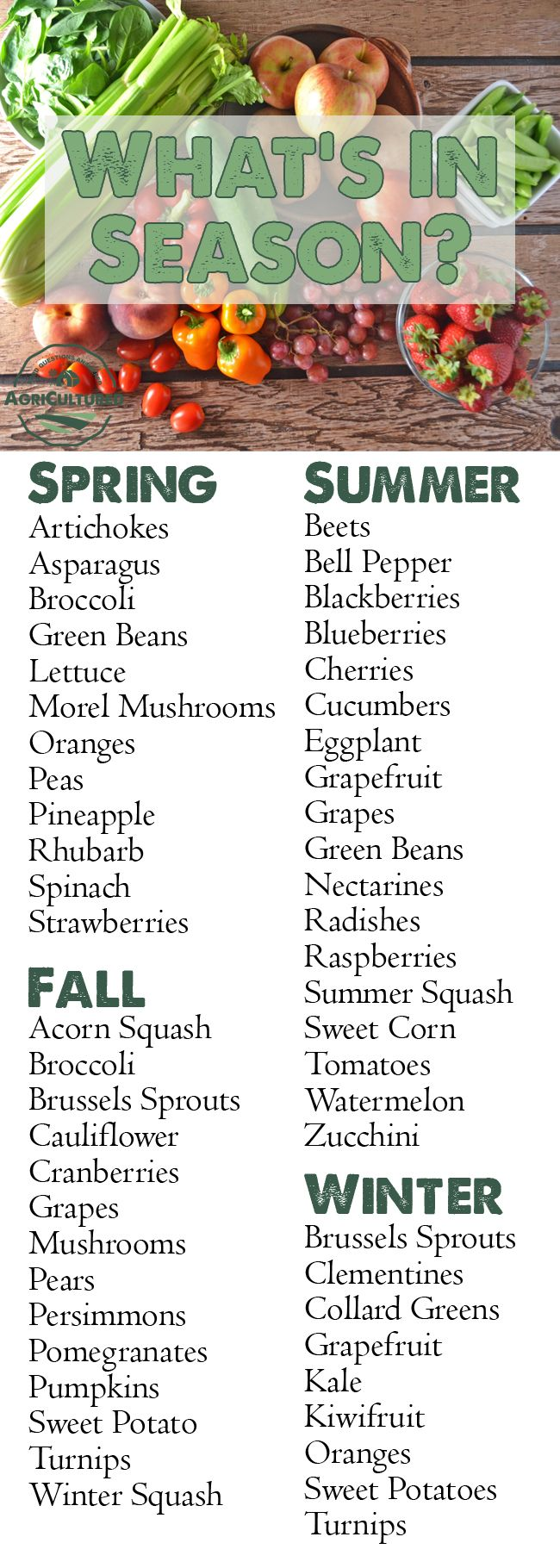 What Fresh Produce is in Season? from AgriCultured. Shopping for produce when it's in season means you can find the freshest fruits and vegetables, often at a lower cost. Get the list of what's in season!