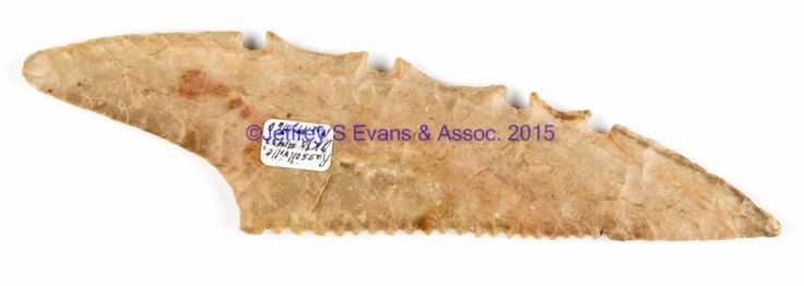 """Jeffrey Evans Auctions 11/14/15  Lot 333.  Estimated Price: $400 - $600.  Realized Price: $518.    Description: NATIVE AMERICAN STONE POINT, asymmetrical, withstraight serrated edge, opposite four notches alternating with concave indentions. Marked in ink on sticker """"Russellville, Okla. Mar. 17, 1960."""" Attributed by William Jack Hranicky as Spiro point, Mississippian culture, and the Mississippian period, 1000-1520 A.D. 8 3/8"""" L.  Excellent condition. Published: Wm Jack Hranicky - North…"""