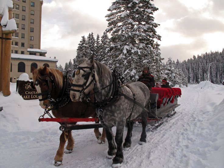 pin snow ride carriage - photo #35