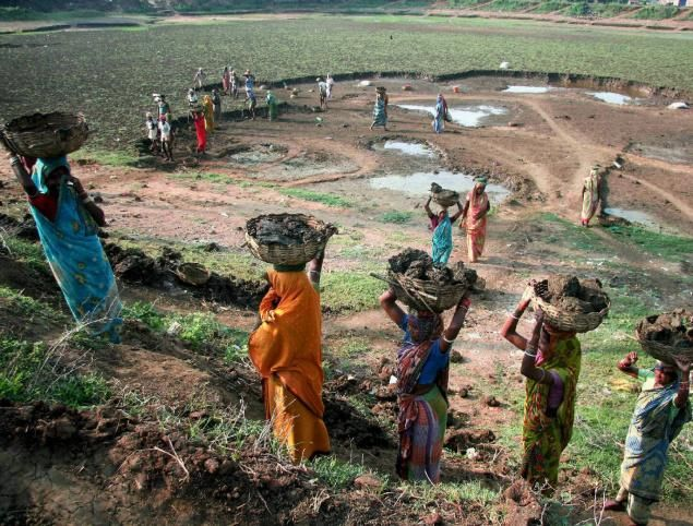 not related exactly to my topic but indirectly related as there are planting trees and many ofher environmental aids  -MGNREGA works have paid off in multiple ways. Photo: PTI