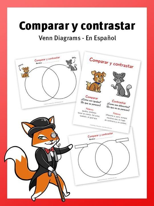Compare And Contrast A Dog And Cat Spanish