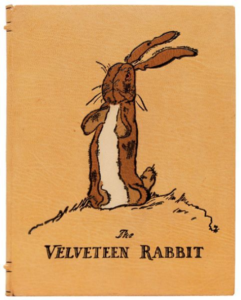 The Velveteen RabbitWorth Reading, Bookworm United, Margery Williams, Book Lovers, The Velveteen Rabbit, Peter O'Tool, Google Search, Real Mom, Editing Book