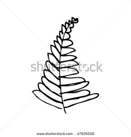 fern coloring pages - photo#23