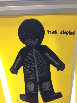 knutselen/tekenen skelet