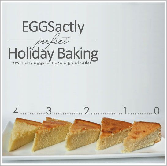 EGGSactly Perfect Baking