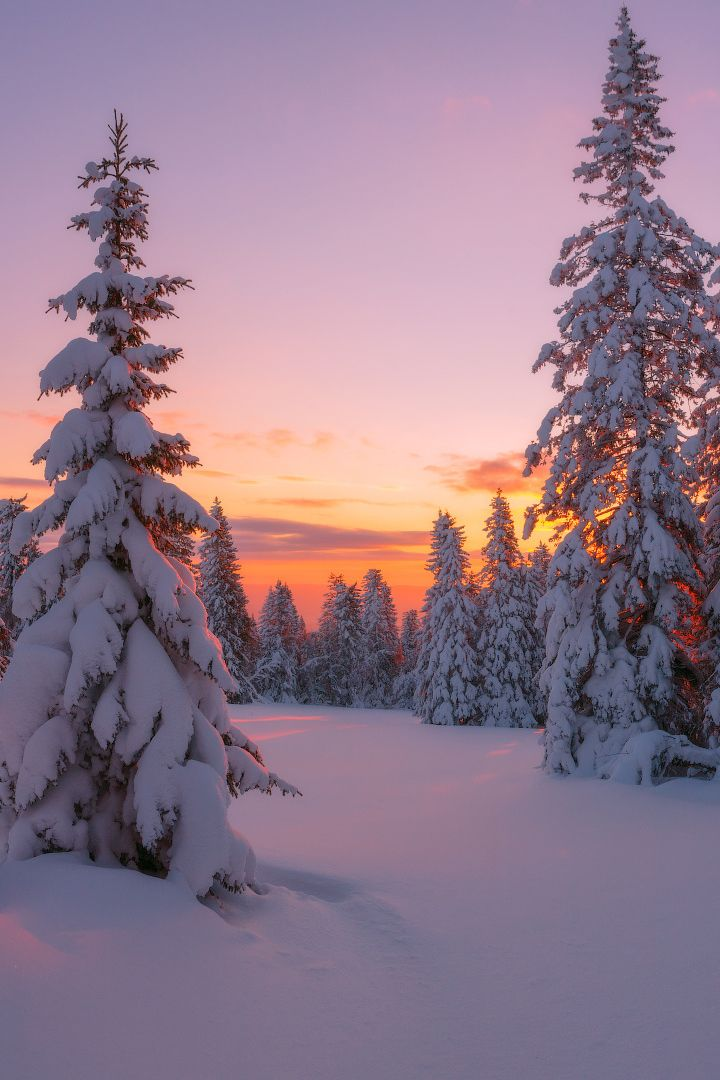 banshy: In Embraces of Winter // Marat Akhmetvale…