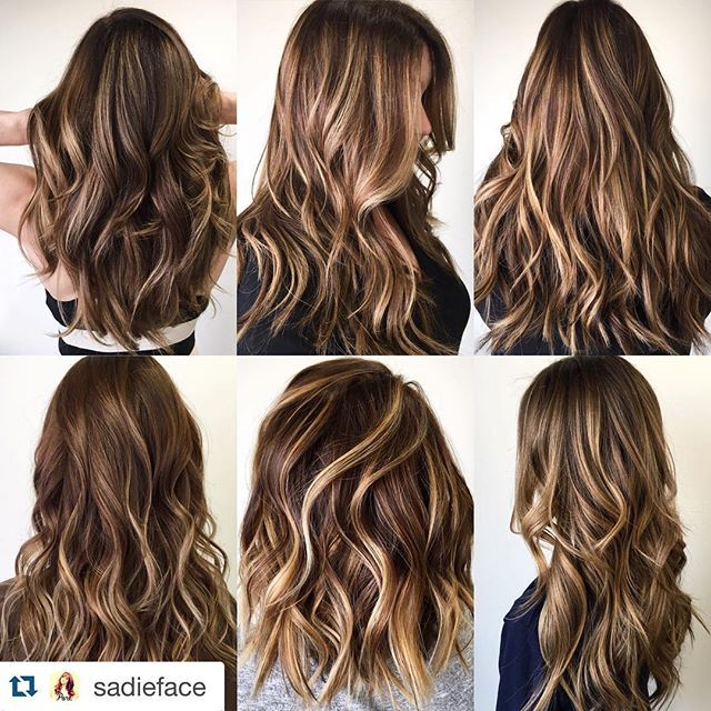 Best 25 brunette going blonde ideas on pinterest going blonde but sometimes full blown blonde is not the answer adding highlights can soften up a rich color by adding dimension pmusecretfo Gallery