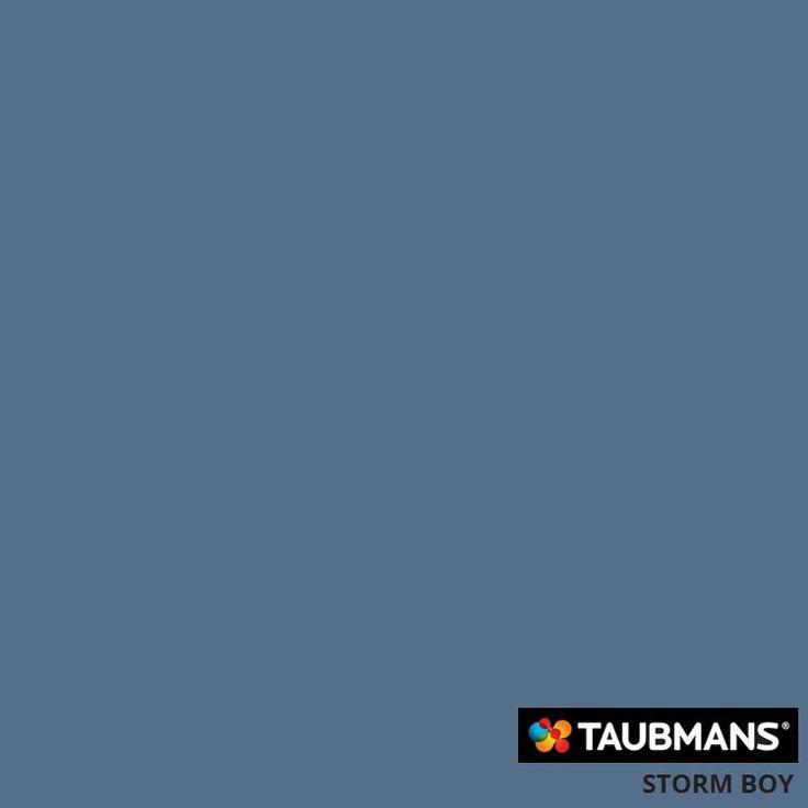 #Taubmanscolour #stormboy