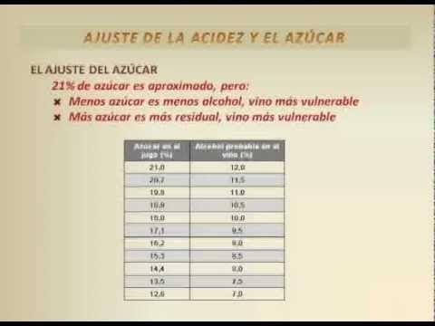 Video 3 - Curso Elaboración Artesanal de Vino de Frutas